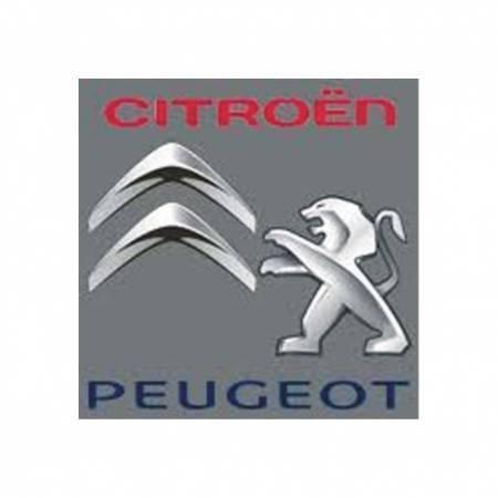 FGP Kft. Citroën szerviz és alkatrészbolt, Peugeot szerviz  és alkatrészbolt